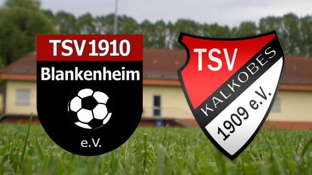 Heim_2016_05_14_TSV_Kalkobes